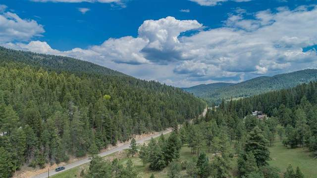 Lot 4 Rose St, Cloudcroft, NM 88317 (MLS #164393) :: Assist-2-Sell Buyers and Sellers Preferred Realty