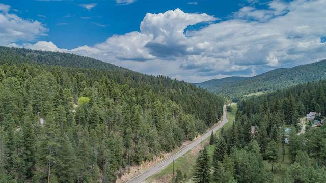 Lot  5 Rose St, Cloudcroft, NM 88317 (MLS #164394) :: Assist-2-Sell Buyers and Sellers Preferred Realty
