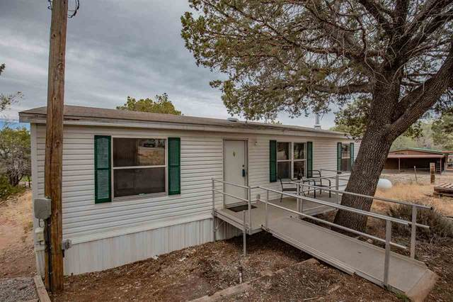 31 Cottage Row, High Rolls Mountain Park, NM 88325 (MLS #164449) :: Assist-2-Sell Buyers and Sellers Preferred Realty
