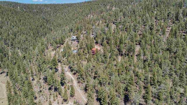 20 Deer Spring Rd, Cloudcroft, NM 88317 (MLS #164487) :: Assist-2-Sell Buyers and Sellers Preferred Realty