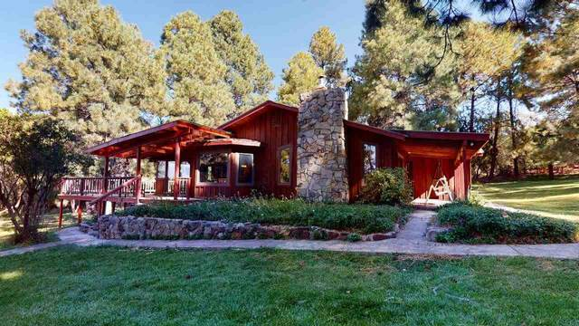 68 Haynes Canyon Rd, High Rolls Mountain Park, NM 88325 (MLS #164499) :: Assist-2-Sell Buyers and Sellers Preferred Realty
