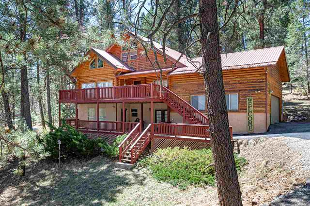 16 Wild Cherry, Mayhill, NM 88339 (MLS #164512) :: Assist-2-Sell Buyers and Sellers Preferred Realty