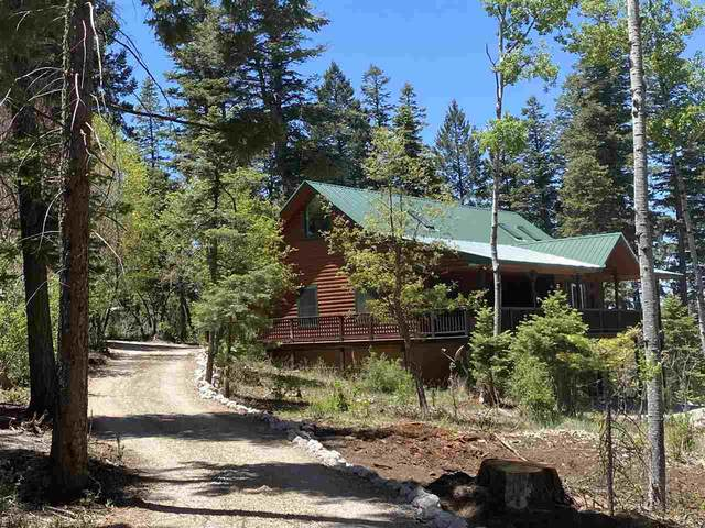 907 Sugar Pine Dr #3, Cloudcroft, NM 88317 (MLS #164530) :: Assist-2-Sell Buyers and Sellers Preferred Realty