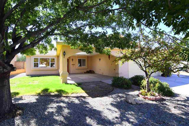 220 Kerry Av, Alamogordo, NM 88310 (MLS #164828) :: Assist-2-Sell Buyers and Sellers Preferred Realty
