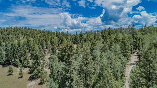1 Autumn Rd, Cloudcroft, NM 88317 (MLS #164939) :: Assist-2-Sell Buyers and Sellers Preferred Realty