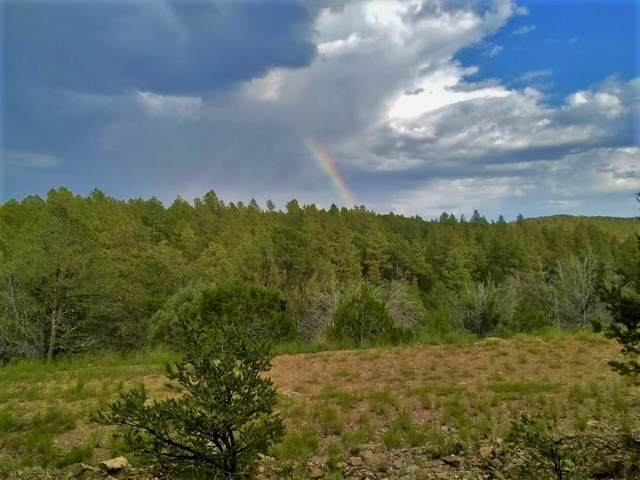 Marlin Dr #12, Timberon, NM 88350 (MLS #165141) :: Assist-2-Sell Buyers and Sellers Preferred Realty