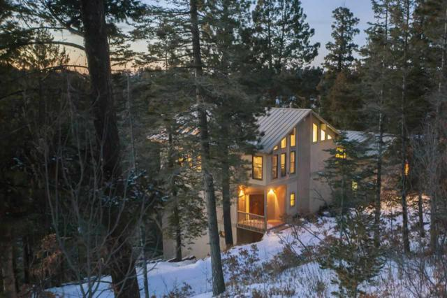 407 Sunset Blvd, Cloudcroft, NM 88317 (MLS #156831) :: Assist-2-Sell Buyers and Sellers Preferred Realty