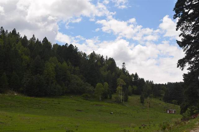 Pierce Canyon Rd, Cloudcroft, NM 88317 (MLS #158560) :: Assist-2-Sell Buyers and Sellers Preferred Realty