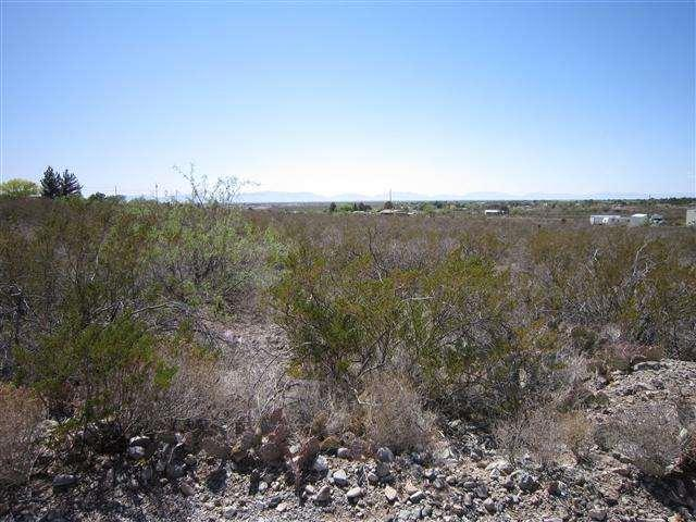 Lot 52 David Dr, Alamogordo, NM 88310 (MLS #147159) :: Assist-2-Sell Buyers and Sellers Preferred Realty