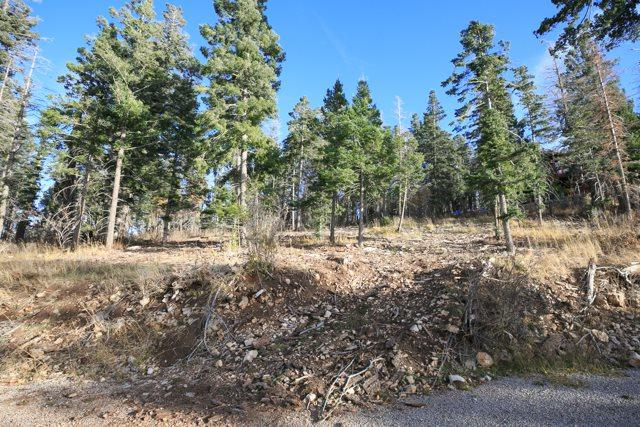 lot 23 blk 4 Woodlands Way, Cloudcroft, NM 88317 (MLS #153400) :: Assist-2-Sell Buyers and Sellers Preferred Realty