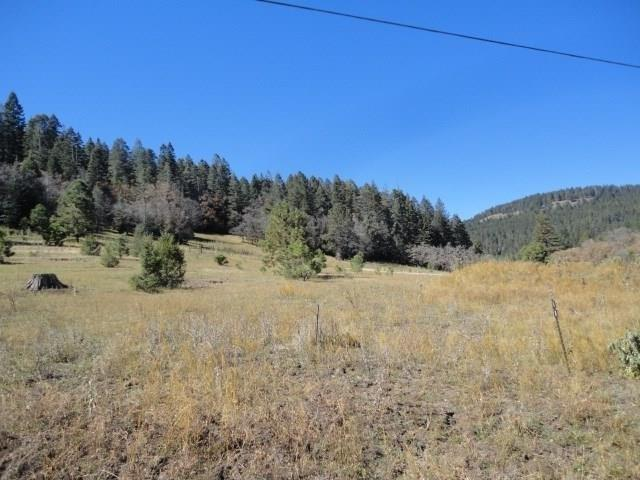Lot 41 Billie Jean Way, Cloudcroft, NM 88317 (MLS #156074) :: Assist-2-Sell Buyers and Sellers Preferred Realty