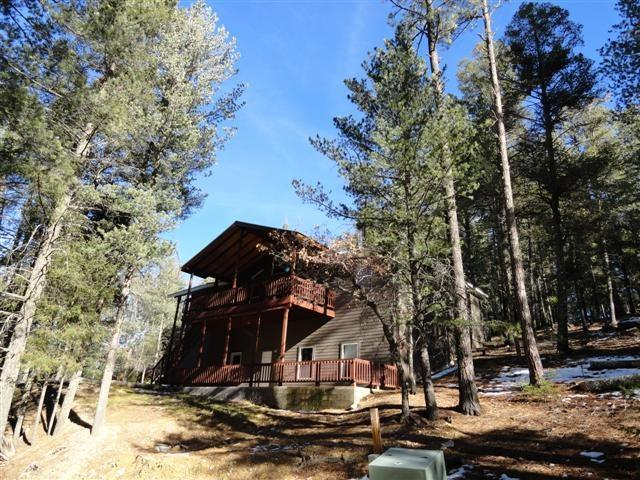 39 Silver Fox Trl, Mayhill, NM 88339 (MLS #157315) :: Assist-2-Sell Buyers and Sellers Preferred Realty