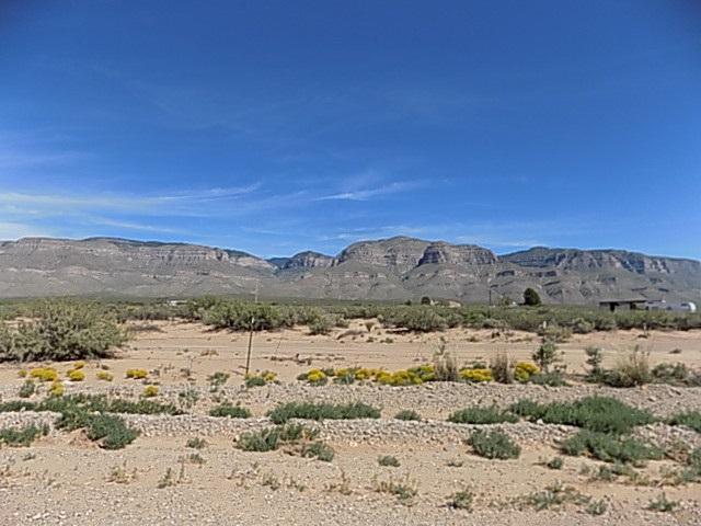 Chapparral Loop, Alamogordo, NM 88310 (MLS #157393) :: Assist-2-Sell Buyers and Sellers Preferred Realty