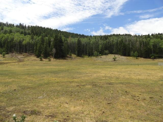 Hwy 130, Cloudcroft, NM 88317 (MLS #158072) :: Assist-2-Sell Buyers and Sellers Preferred Realty
