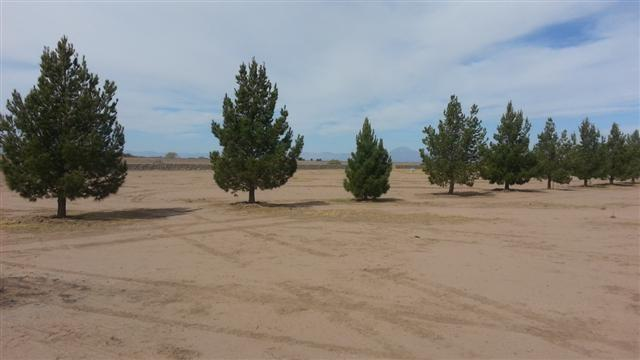 Lot 4 Abercrombie Acres, Tularosa, NM 88352 (MLS #158094) :: Assist-2-Sell Buyers and Sellers Preferred Realty