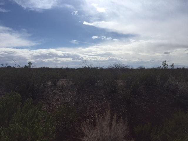 Gravel Pit Rd, La Luz, NM 88337 (MLS #158209) :: Assist-2-Sell Buyers and Sellers Preferred Realty