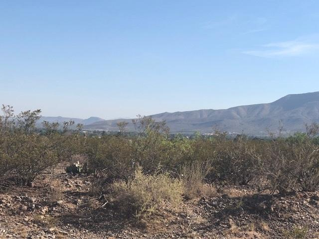 1919 Ocotillo Dr, Alamogordo, NM 88310 (MLS #158825) :: Assist-2-Sell Buyers and Sellers Preferred Realty