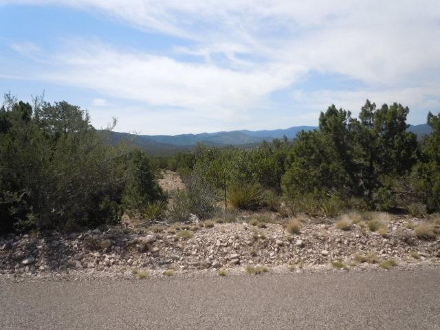 Address Not Published, La Luz, NM 88337 (MLS #158876) :: Assist-2-Sell Buyers and Sellers Preferred Realty
