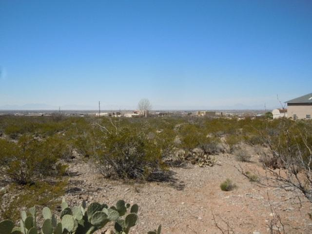S Canyon Rd, Alamogordo, NM 88310 (MLS #160200) :: Assist-2-Sell Buyers and Sellers Preferred Realty