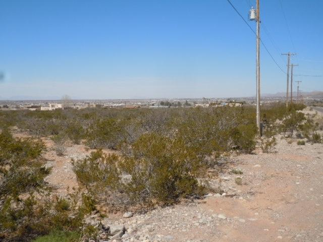 Address Not Published, Alamogordo, NM 88310 (MLS #160201) :: Assist-2-Sell Buyers and Sellers Preferred Realty