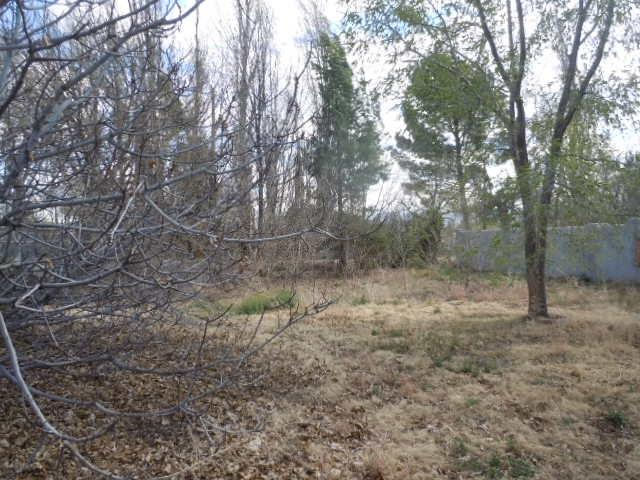1101 1st St, Tularosa, NM 88352 (MLS #160282) :: Assist-2-Sell Buyers and Sellers Preferred Realty