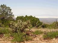 40 Maruche Canyon Rd, La Luz, NM 88337 (MLS #160472) :: Assist-2-Sell Buyers and Sellers Preferred Realty