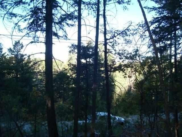 Address Not Published, Cloudcroft, NM 88317 (MLS #161004) :: Assist-2-Sell Buyers and Sellers Preferred Realty