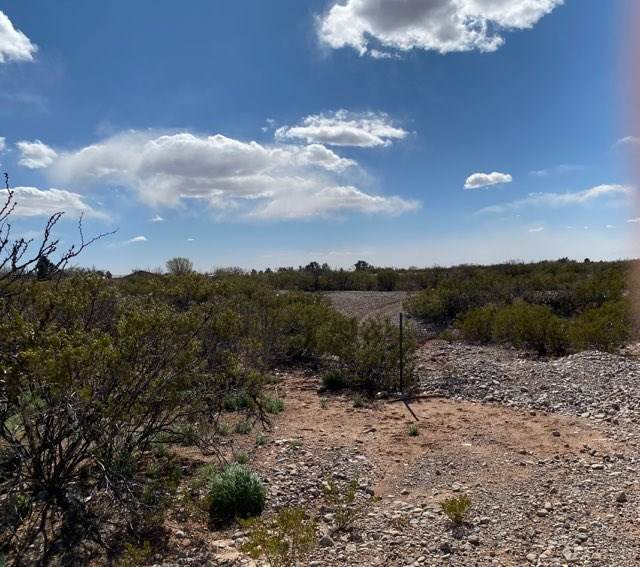 20 Appler Rd, La Luz, NM 88337 (MLS #162139) :: Assist-2-Sell Buyers and Sellers Preferred Realty