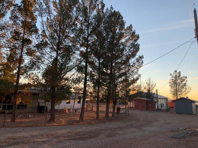 23 Dingo Rd #0, Alamogordo, NM 88310 (MLS #162180) :: Assist-2-Sell Buyers and Sellers Preferred Realty