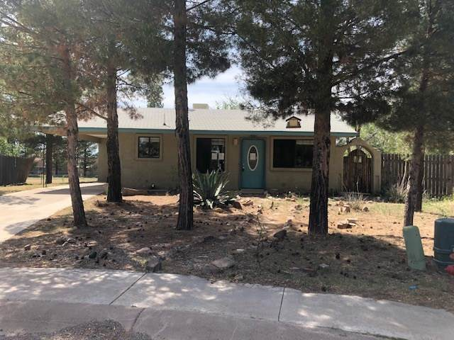 1110 Marcial Cir, Alamogordo, NM 88310 (MLS #162847) :: Assist-2-Sell Buyers and Sellers Preferred Realty