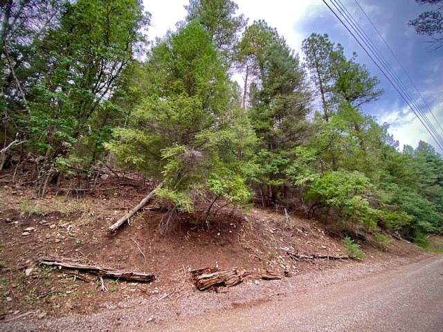 Address Not Published, Cloudcroft, NM 88317 (MLS #163138) :: Assist-2-Sell Buyers and Sellers Preferred Realty