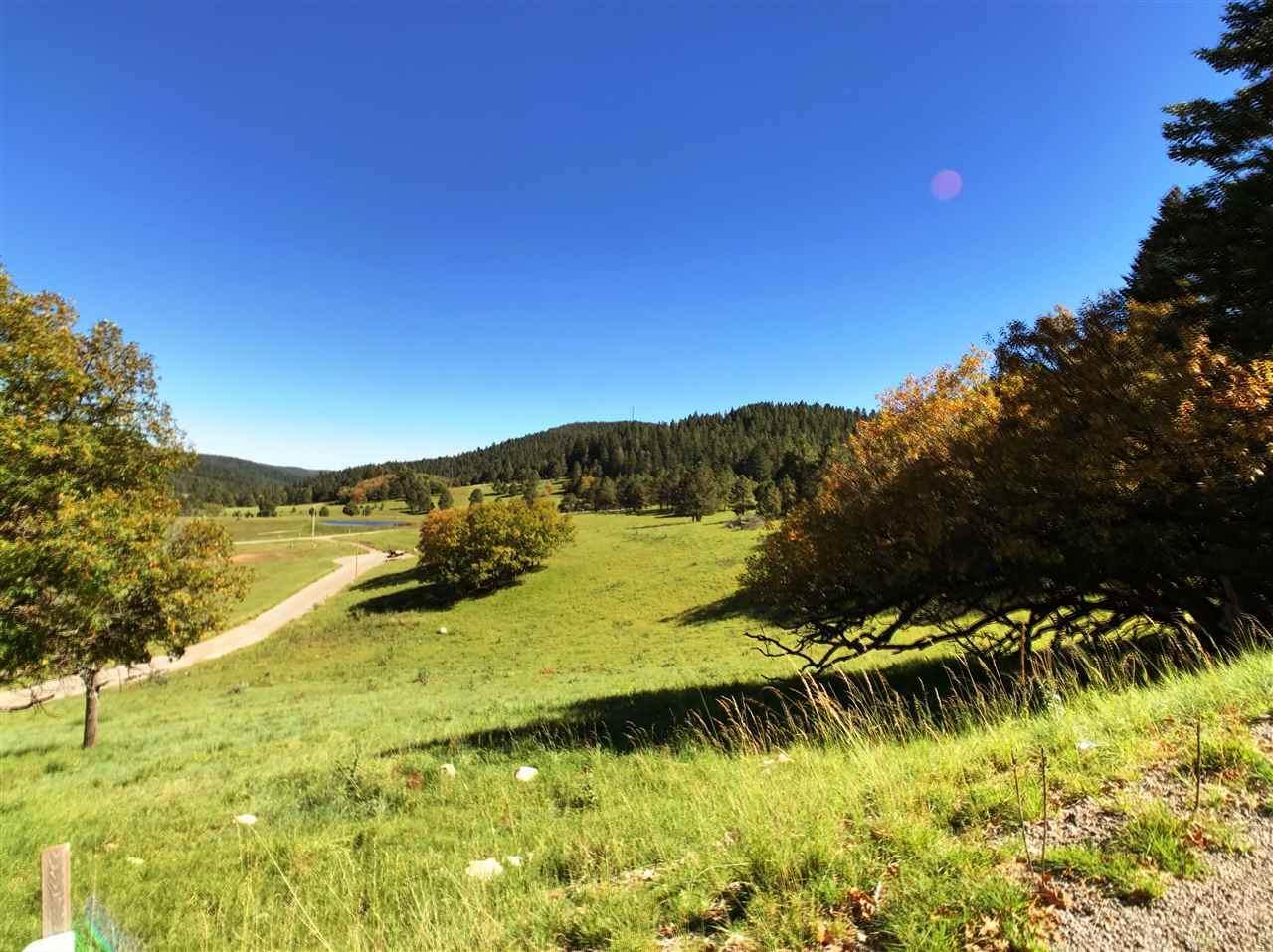 9 Elk Meadows - Photo 1