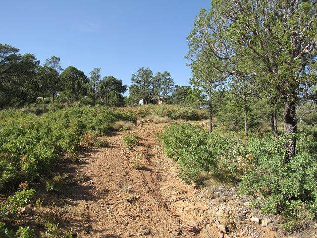 123 Norwood Dr #7, Timberon, NM 88350 (MLS #163956) :: Assist-2-Sell Buyers and Sellers Preferred Realty
