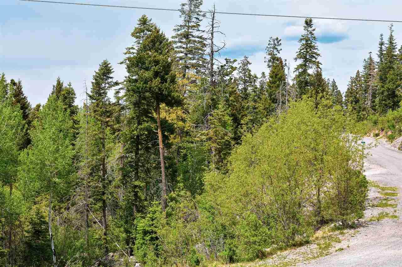 1090 Woodlands Way - Photo 1