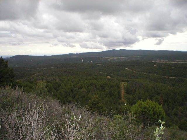 Sterling Rd #17, Timberon, NM 88350 (MLS #165083) :: Assist-2-Sell Buyers and Sellers Preferred Realty