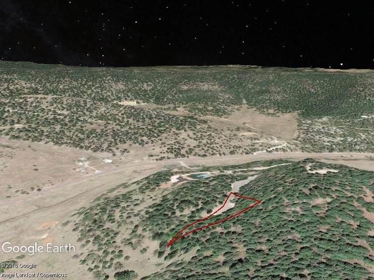 4 Elk Ridge - Photo 1
