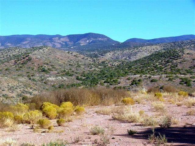 Lot 4 and 5 Fresnal Canyon Rd, La Luz, NM 88337 (MLS #165435) :: Assist-2-Sell Buyers and Sellers Preferred Realty