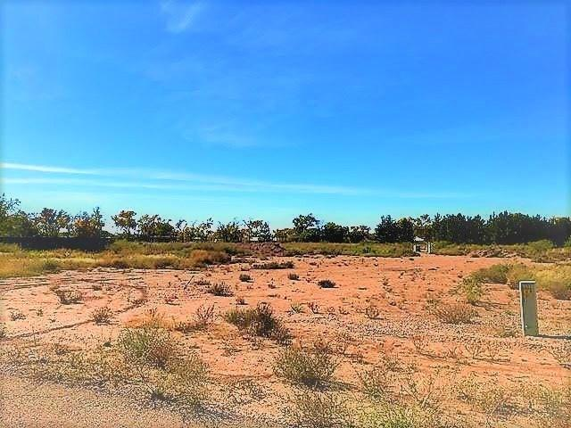 Lawrence Dr, Tularosa, NM 88352 (MLS #157445) :: Assist-2-Sell Buyers and Sellers Preferred Realty