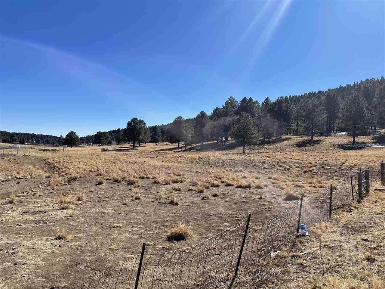Taos - Photo 1
