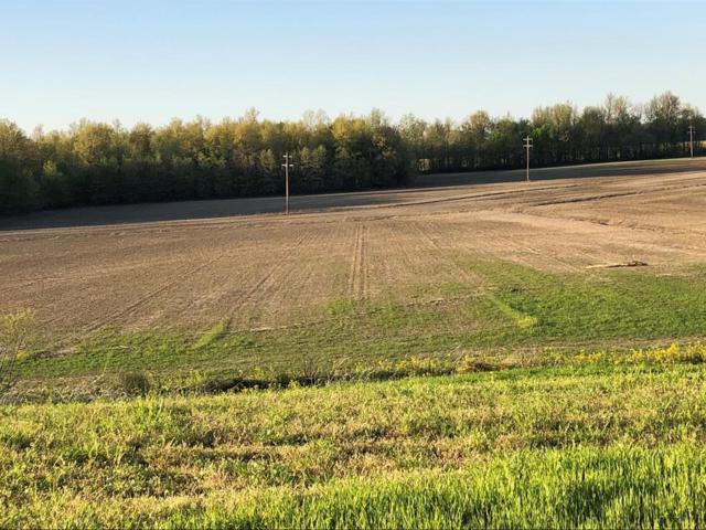 8223 Hamilton Ferry Rd, Owensboro, KY 42301 (MLS #73524) :: Farmer's House Real Estate, LLC