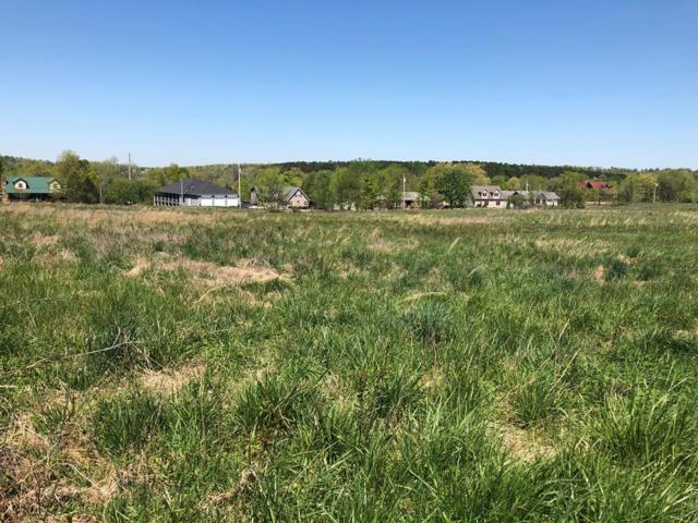 #2 C-L Buddy Dr, McDaniels, KY 40152 (MLS #73566) :: Farmer's House Real Estate, LLC