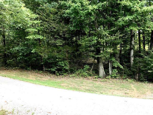 Lot 35 Parkview Lane, Falls of Rough, KY 40119 (MLS #74870) :: Kelly Anne Harris Team
