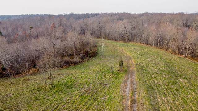 7040 State Route 1700, Fordsville, KY 42343 (MLS #80819) :: The Harris Jarboe Group