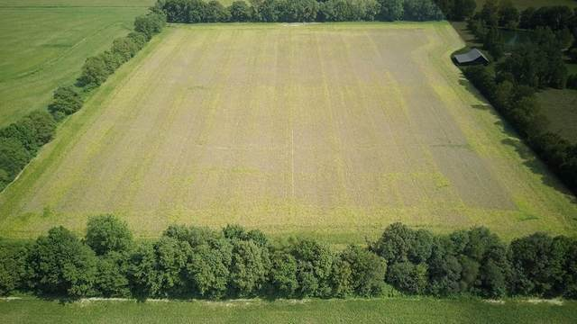 3301 Taylor Rd E, Philpot, KY 42366 (MLS #81646) :: The Harris Jarboe Group