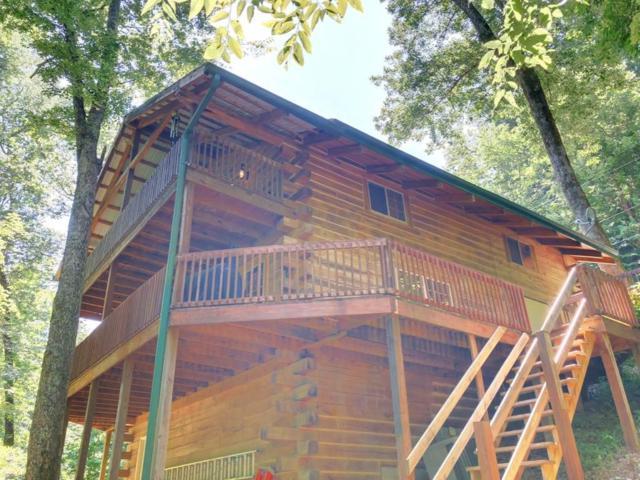 1844 Lake Forest Ln, Westview, KY 40178 (MLS #73603) :: Farmer's House Real Estate, LLC