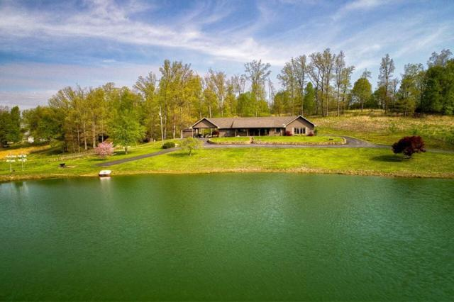 5625 Hwy 657, Lewisport, KY 42351 (MLS #74654) :: Farmer's House Real Estate, LLC