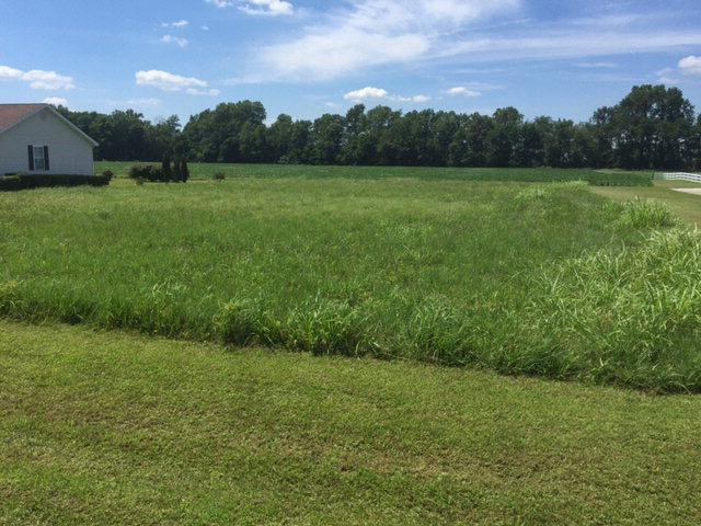 000 Hwy 657, Lewisport, KY 42351 (MLS #69344) :: Farmer's House Real Estate, LLC