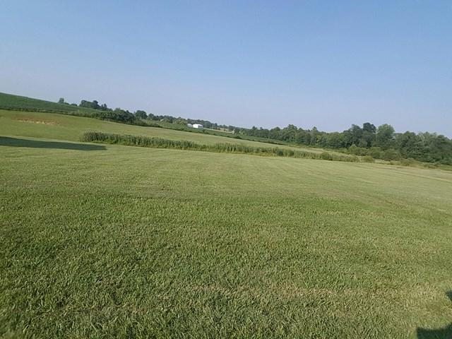 11877 Young Dr., Utica, KY 42376 (MLS #72094) :: Farmer's House Real Estate, LLC