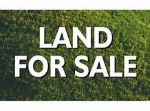 000 Scenic Hilltop Lane, Hawesville, KY 42348 (MLS #72454) :: Farmer's House Real Estate, LLC