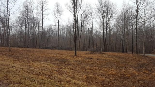 Lot 31 Lake Of The Woods, McDaniels, KY 48742 (MLS #72929) :: Farmer's House Real Estate, LLC